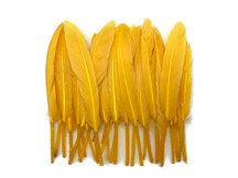 1 Pack - Golden Yellow Dyed Duck Cochettes Loose Wing Feather 0.30 Oz.