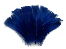 "1/4 Lb - 2-3"" Royal Blue Goose Coquille Loose Wholesale Feathers (Bulk)"