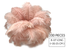 "100 Pieces - 8-10"" Champagne Ostrich Dyed Drab Body Wholesale Feathers (Bulk)"