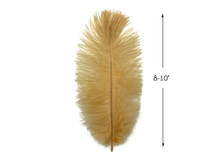 """10 Pieces - 8-10"""" Antique Gold Ostrich Dyed Drabs Body Feathers"""