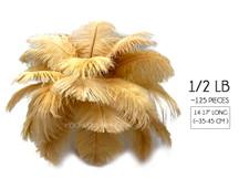 """1/2 Lb - 14-17"""" Antique Gold Ostrich Large Drab Wholesale Feathers (Bulk)"""