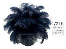 "1/2 Lb - 14-17"" Navy Blue Ostrich Large Drab Wholesale Feathers (Bulk) Swa"