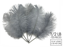"1/2 Lb - 12-16"" Silver Gray Ostrich Tail Wholesale Fancy Feathers (Bulk)"
