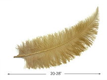 """10 Pieces - 20-28"""" Antique Gold Ostrich Spads Large Wing Feathers"""