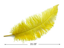 "10 Pieces - 20-28"" Yellow Ostrich Spads Large Wing Feathers"