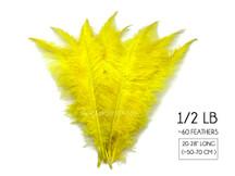 "1/2 Lb - Yellow Large Ostrich Spads Wholesale Feathers 20-28"" (Bulk)"