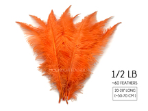 "1/2 Lb - Orange Large Ostrich Spads Wholesale Feathers 20-28"" (Bulk)"