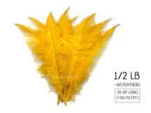 "1/2 Lb - Golden Yellow Large Ostrich Spads Wholesale Feathers 20-28"" (Bulk)"