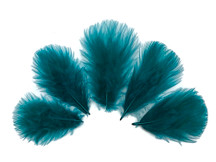 1/4 Lb - Peacock Green Turkey Marabou Short Down Fluffy Loose Wholesale Feathers (Bulk)