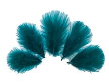 1/4 Lb - Peacock Green Turkey Marabou Short Down Fluffy Loose Wholesale Feathers (Bulk)