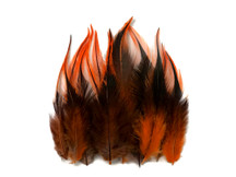 1 Dozen - Short Orange Badger Whiting Farm Rooster Hair Extension Feathers