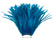 "2.5 Inch Strip - 16-18"" Turquoise Blue Strung Bleach & Dyed Rooster Coque Tail Feathers"