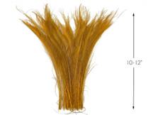 50 Pieces - Antique Gold Bleached & Dyed Peacock Swords Cut Wholesale Feathers (Bulk)