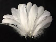 1/4 Lb - White Goose Nagoire Wholesale Feathers (Bulk)