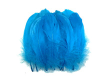 1 Pack - Turquoise Blue Goose Nagoire Loose Feather - 0.25 Oz.
