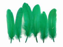 1 Pack - Kelly Green Goose Satinettes Loose Feathers 0.3 Oz.