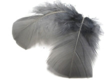1 Pack - Grey Turkey T-Base Plumage Feathers 0.50 Oz.