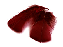1 Pack - Burgundy Dyed Turkey T-Base triangle Body Plumage Feathers 0.50 Oz.