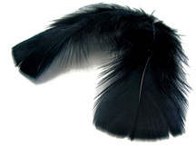 1 Pack - Black Dyed Turkey T-Base triangle Body Plumage Feathers 0.50 Oz.