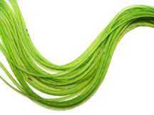 6 Pieces - Xl Solid Lime Thin Rooster Hair Extension Feather