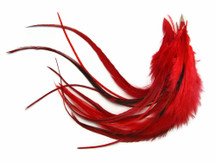 1 Dozen - Medium Solid Red Rooster Hackle Hair Extension Feathers