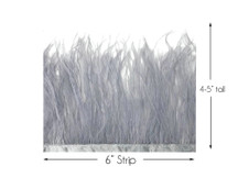 6 Inch Strip - Grey Ostrich Fringe Trim Feather