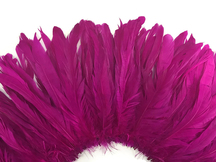 2.5  Inch Strip - Fuchsia Strung Natural Bleach And Dyed Coque Tails Feathers