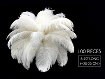 "100 Pieces - 8-10"" Bleached Off White Ostrich Drab Body Wholesale Feathers (Bulk)"