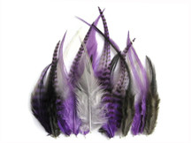 2 Dozen - Short Purple Mix Grizzly Rooster Hackle Hair Extension Feathers