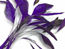 1 Dozen - Eggplant Stripped Rooster Coque Tail Feathers