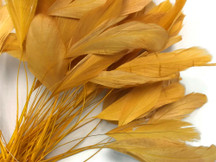 1 Dozen - Golden Stripped Rooster Coque Tail Feathers