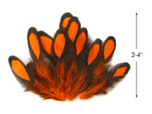 1 Dozen - Orange Whiting Farms Laced Hen Saddle Feathers