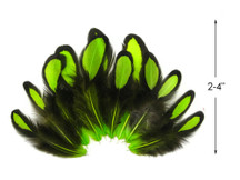 1 Dozen - Lime Green Whiting Farms Laced Hen Saddle Feathers