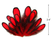 1 Dozen - Red Whiting Farms Laced Hen Saddle Feathers