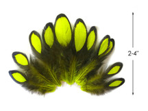 1 Dozen - Fluorescent Yellow Whiting Farms Laced Hen Saddle Feathers