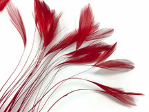 1 Dozen - Red Stripped Rooster Hackle Feather