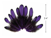1 Dozen - Purple Whiting Farms Laced Hen Saddle Feathers