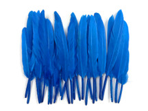 1 Pack - Turquoise Blue Dyed Duck Cochettes Loose Wing Quill Feather 0.30 Oz.