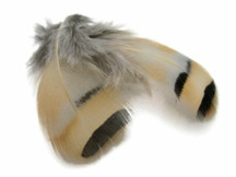 1 Pack - Natural Chukar Partridge Hen Feather 0.10 Oz.