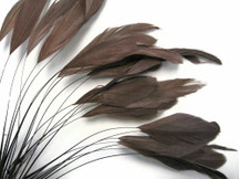 1 Dozen - Brown Stripped Rooster Coque Tail Feathers
