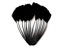 1 Piece - Black Dyed Stripped Duck Cochette Center Fan Feather Pad