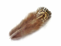 1 Pack - Green Almonds Ringneck Pheasant Feathers 0.10 Oz.