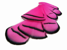 1 Dozen - Pink Lady Amherst Pheasant Tippet Feathers