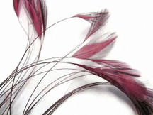1 Dozen - Dusty Rose Stripped Rooster Hackle Feather