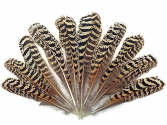 6 Pieces FULL FEATHER PINWHEELS GOLD Hackle Feathers; Headbands//Beads//Hats