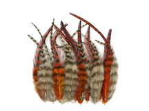 2 Dozen - Short Orange And Tan Grizzly Rooster Hair Extension Feathers