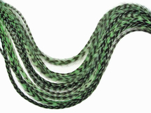 6 Pieces - Xl Mint Green Thin Grizzly Rooster Hair Extension Feathers