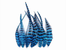 1 Dozen - Short Turquoise Blue Grizzly Rooster Hair Extension Feathers