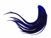 1 Dozen - Medium Royal Blue Grizzly Rooster Saddle Whiting Hair Extension Feathers
