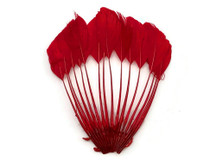 1 Piece - Red Dyed Stripped Duck Cochette Center Fan Feather Pad